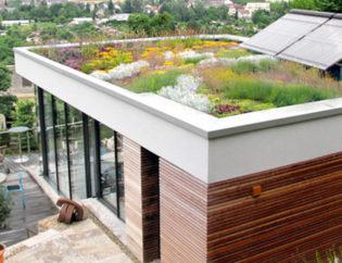 Il Giardino In Città Poli Giardini Sa